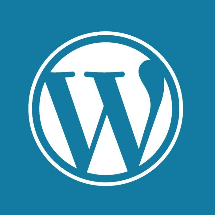 WordPress Brochure Websites